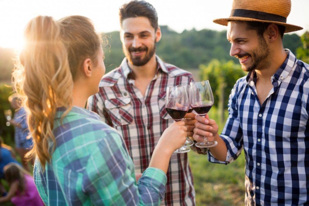 Cresce o interesse por conhecer vinícolas e degustar vinhos