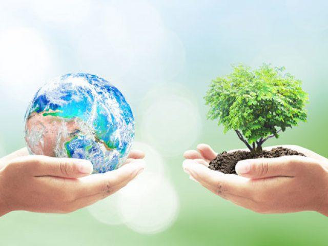 Hoje é o Dia da Terra!