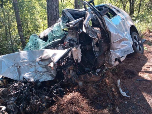 Condutor morre ao colidir carro em árvore entre Lagoa Vermelha e Sananduva